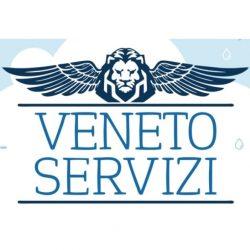 Logo Veneto Servizi Srl